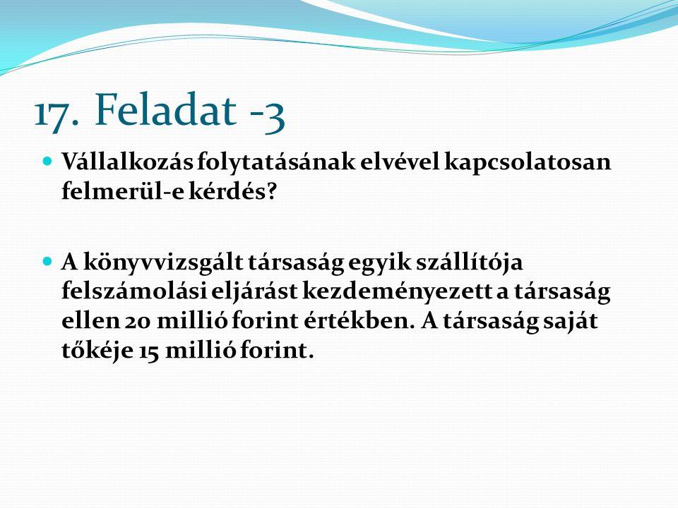 17. Feladat -3 Vállalkozás folytatásának elvével kapcsolatosan felmerül-e kérdés