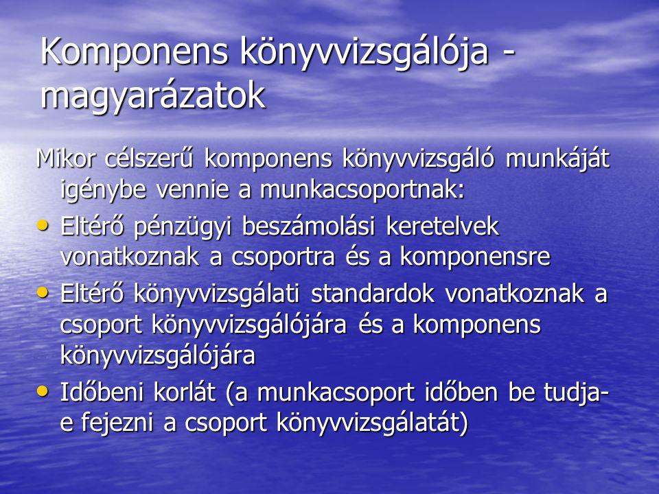 Komponens könyvvizsgálója - magyarázatok