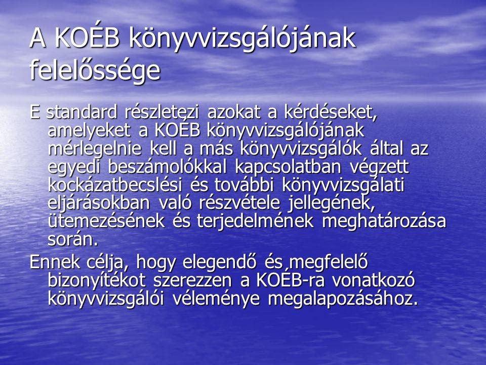 A KOÉB könyvvizsgálójának felelőssége