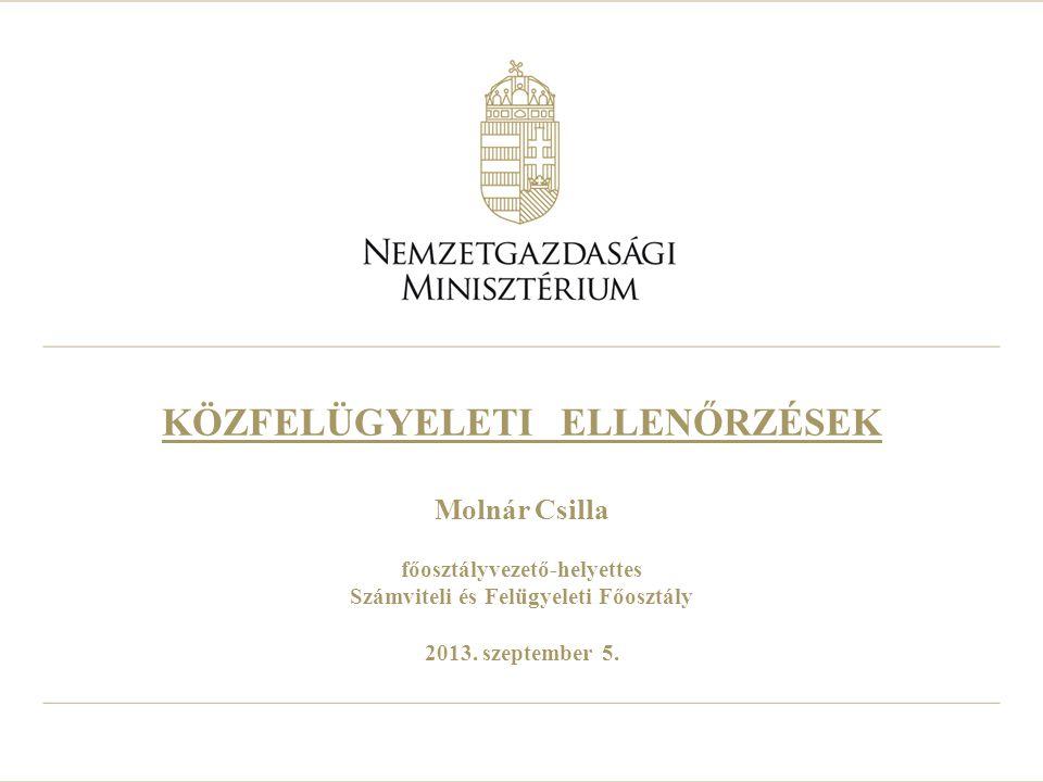 KÖZFELÜGYELETI ELLENŐRZÉSEK Molnár Csilla főosztályvezető-helyettes Számviteli és Felügyeleti Főosztály 2013.