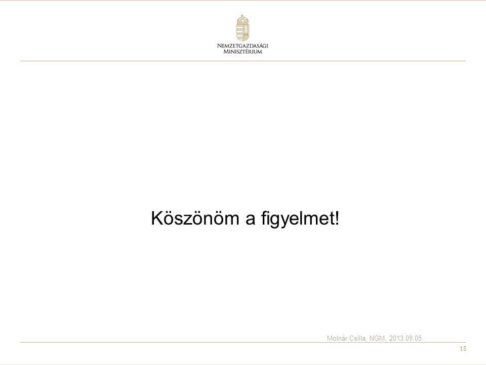 Köszönöm a figyelmet! Molnár Csilla, NGM, 2013.09.05.