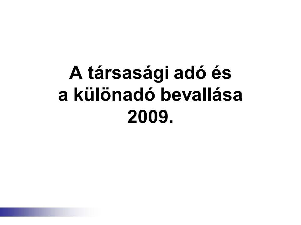 A társasági adó és a különadó bevallása 2009.