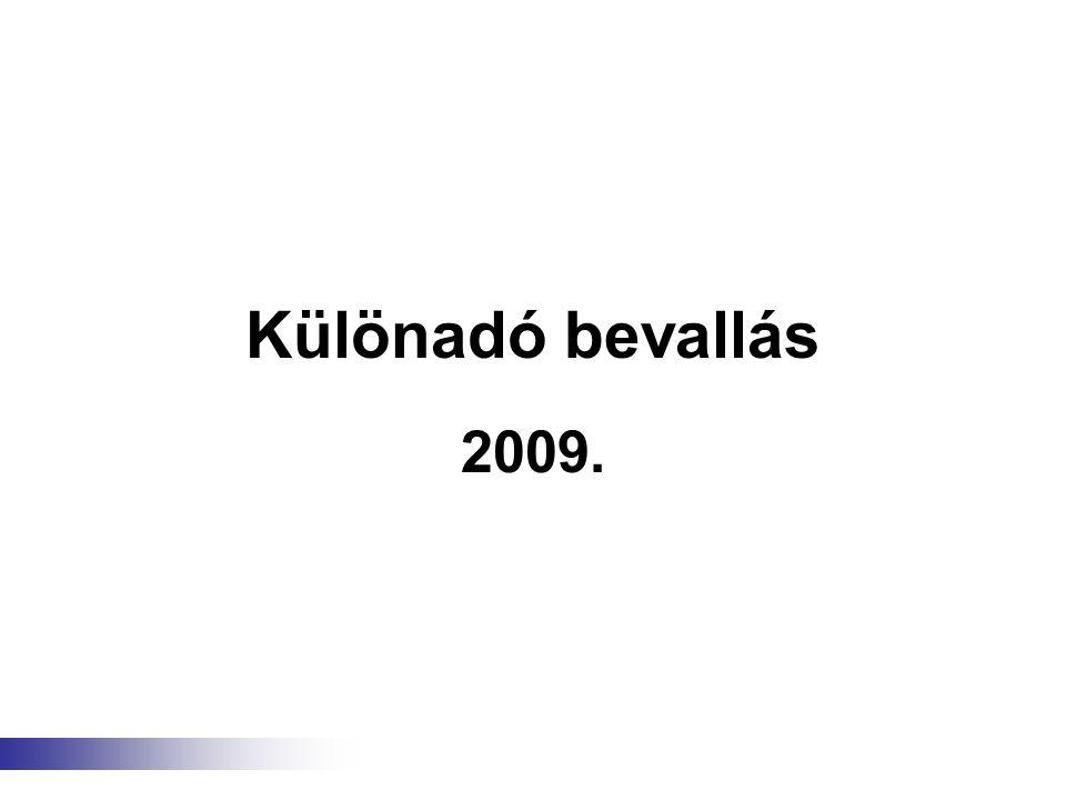 Különadó bevallás 2009.