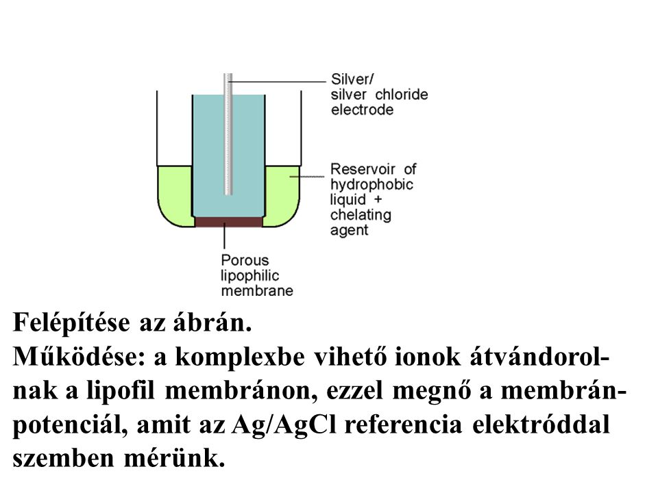 Ionszelektív elektródok