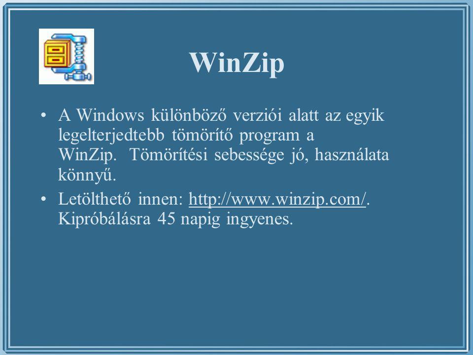 WinZip A Windows különböző verziói alatt az egyik legelterjedtebb tömörítő program a WinZip. Tömörítési sebessége jó, használata könnyű.