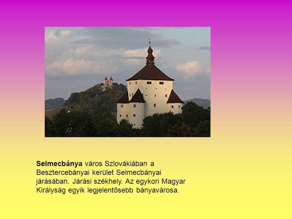 Selmecbánya város Szlovákiában a Besztercebányai kerület Selmecbányai járásában.
