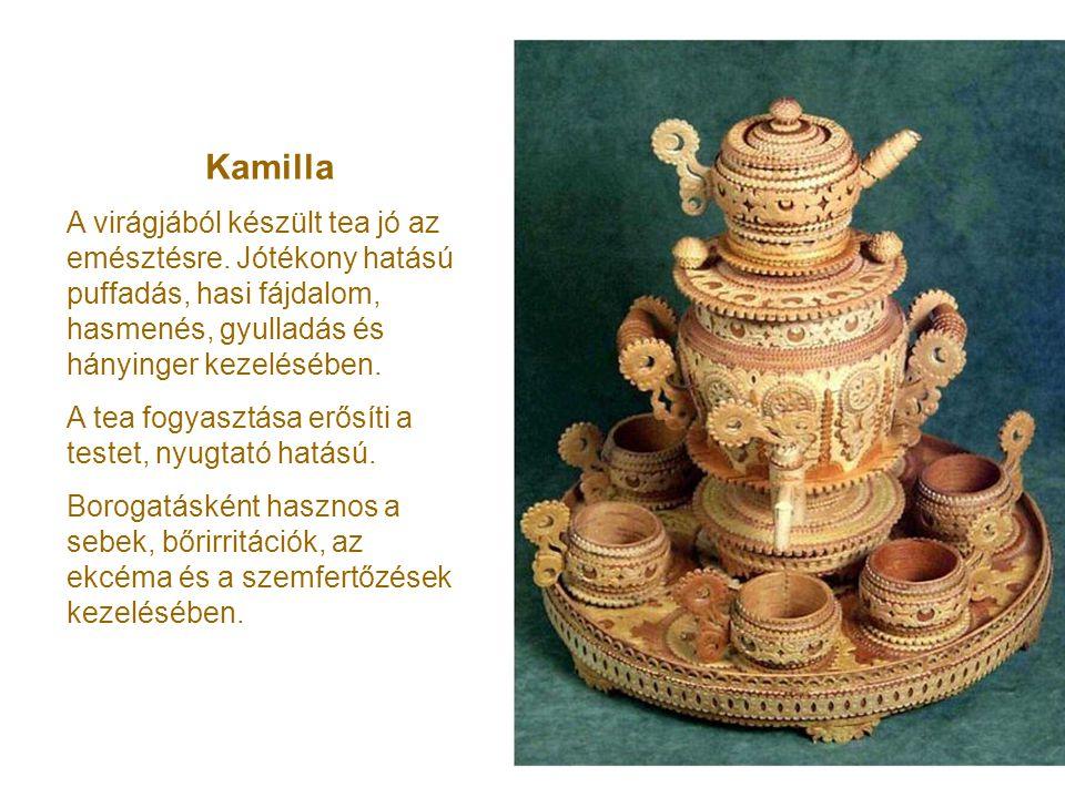 Kamilla A virágjából készült tea jó az emésztésre. Jótékony hatású puffadás, hasi fájdalom, hasmenés, gyulladás és hányinger kezelésében.