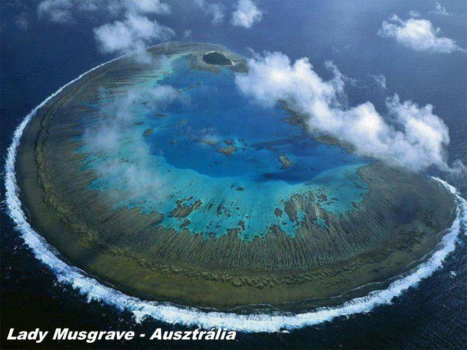 Lady Musgrave - Ausztrália