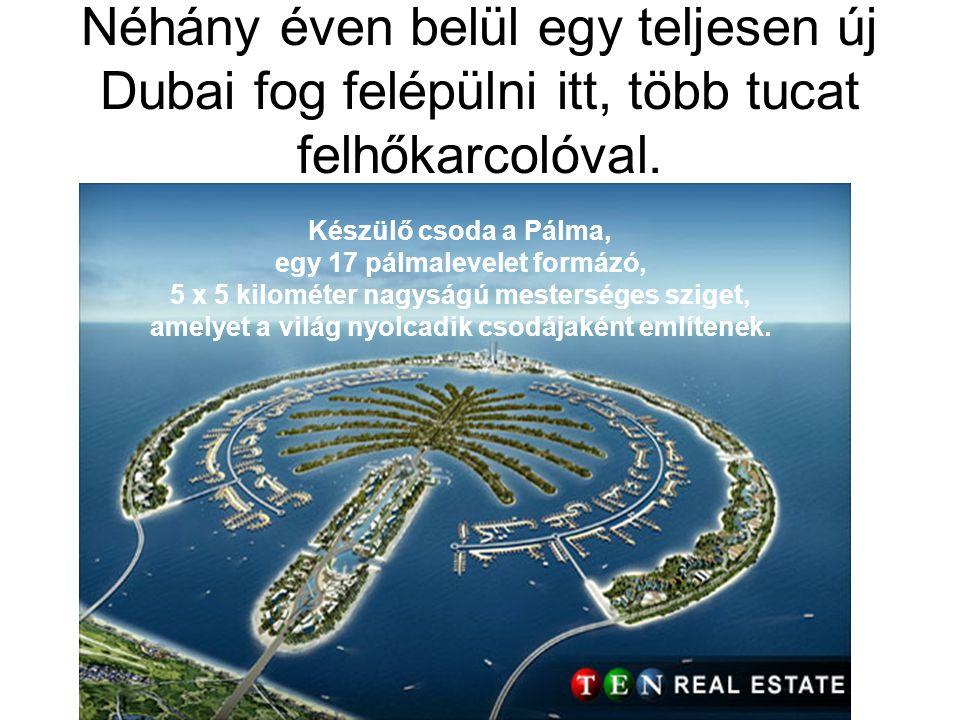 Néhány éven belül egy teljesen új Dubai fog felépülni itt, több tucat felhőkarcolóval.