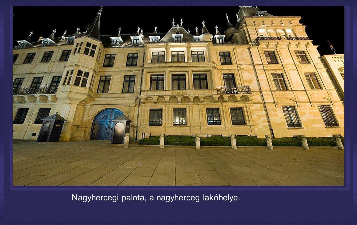Nagyhercegi palota, a nagyherceg lakóhelye.