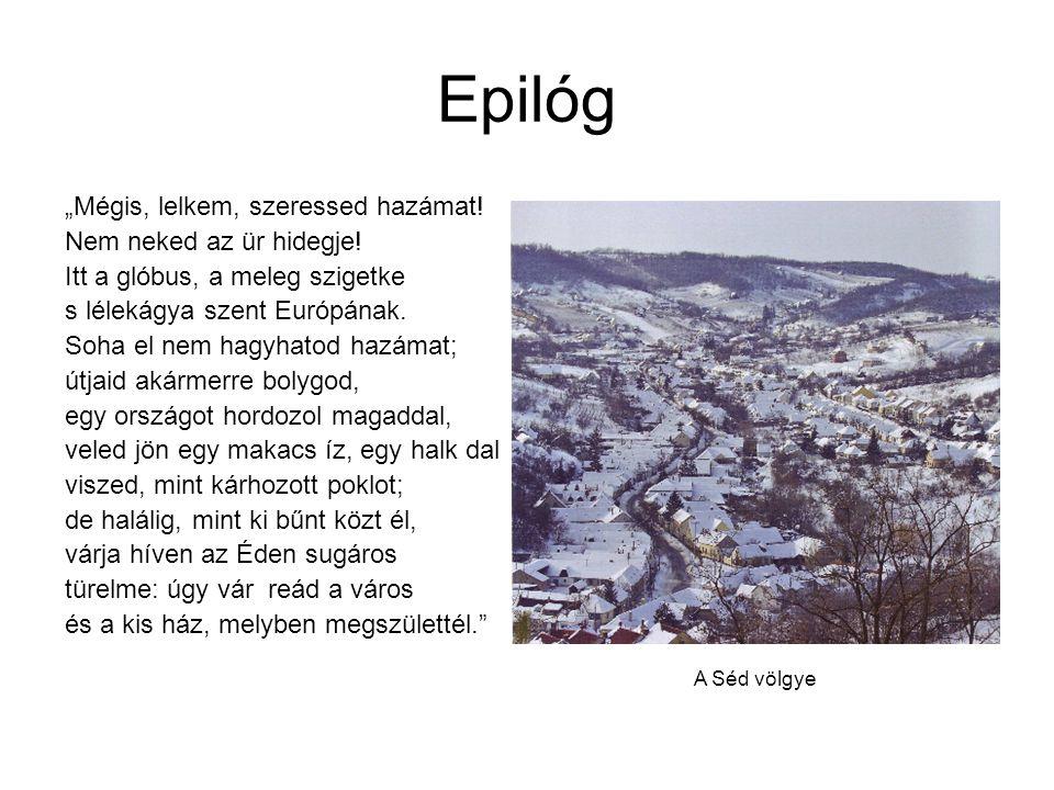 """Epilóg """"Mégis, lelkem, szeressed hazámat! Nem neked az ür hidegje!"""