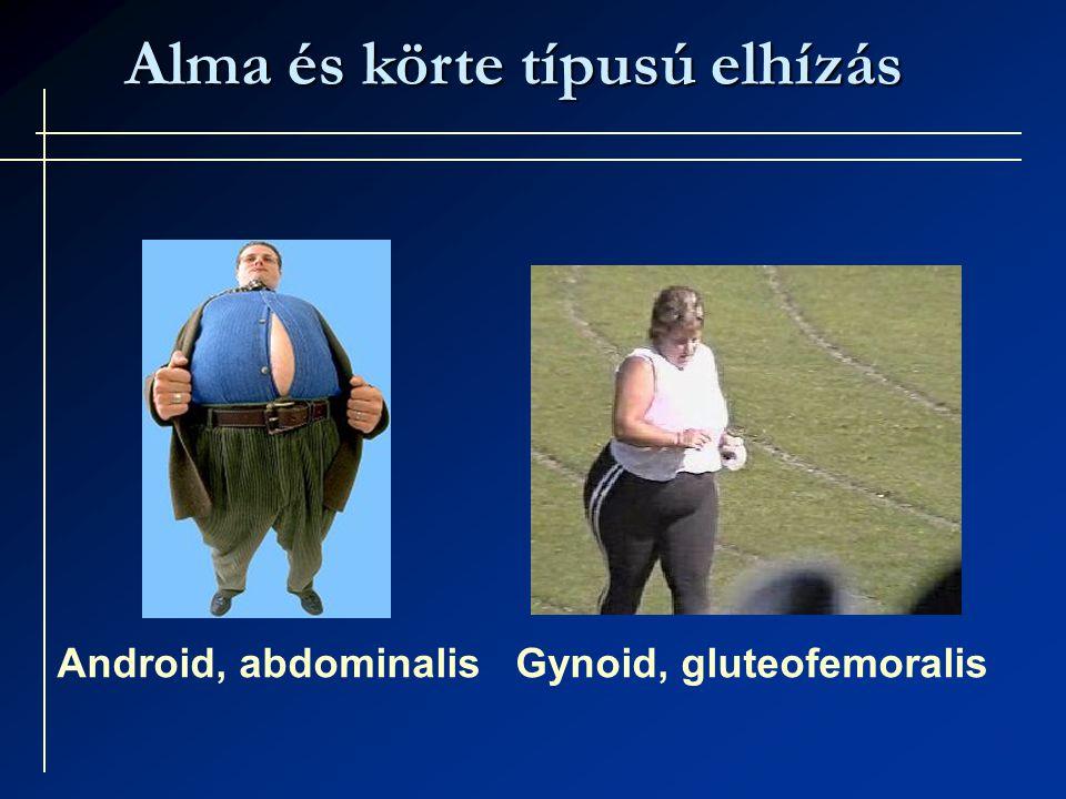 Alma és körte típusú elhízás