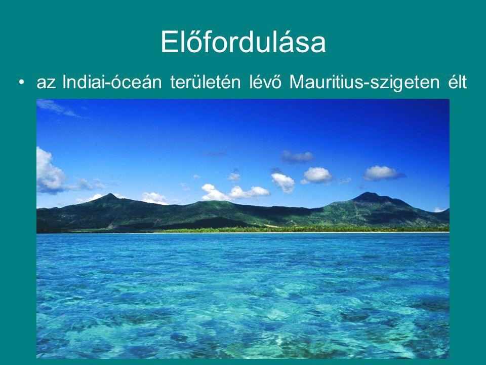 Előfordulása az Indiai-óceán területén lévő Mauritius-szigeten élt