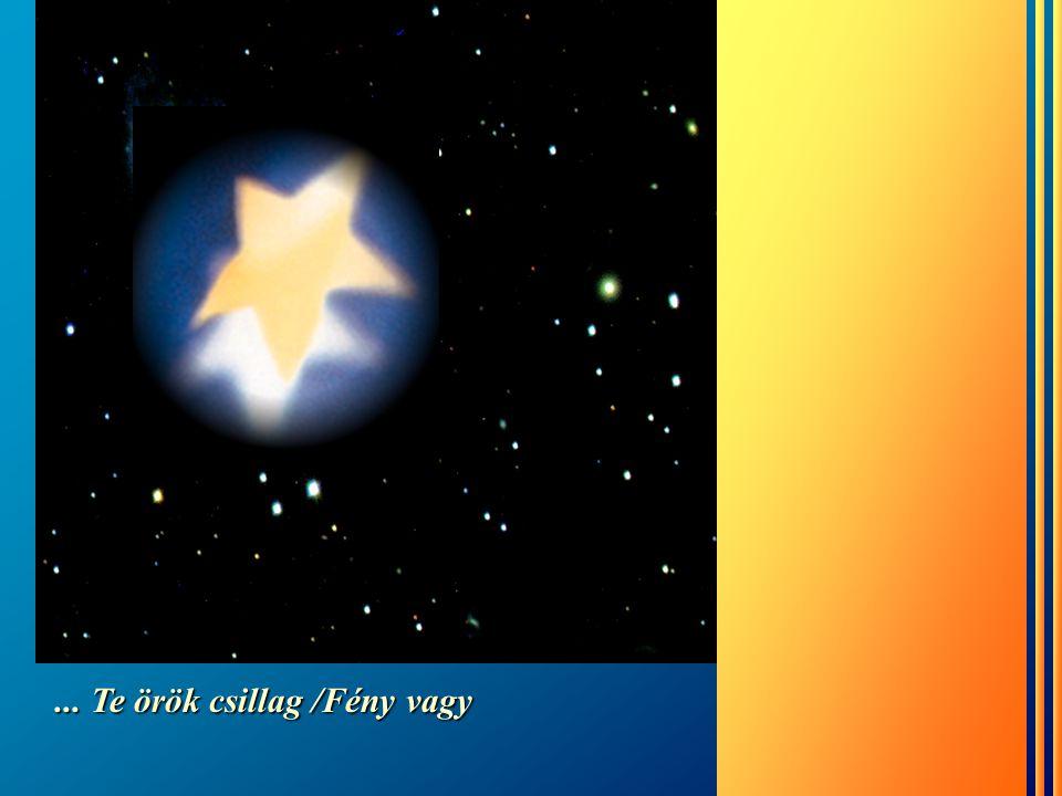 ... Te örök csillag /Fény vagy