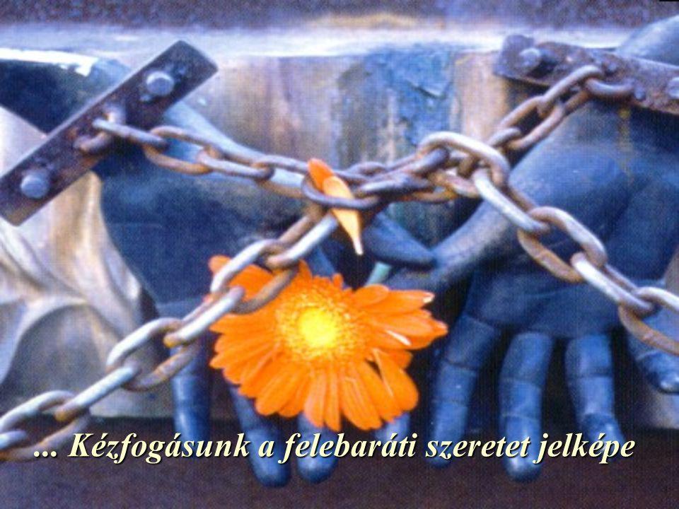 ... Kézfogásunk a felebaráti szeretet jelképe