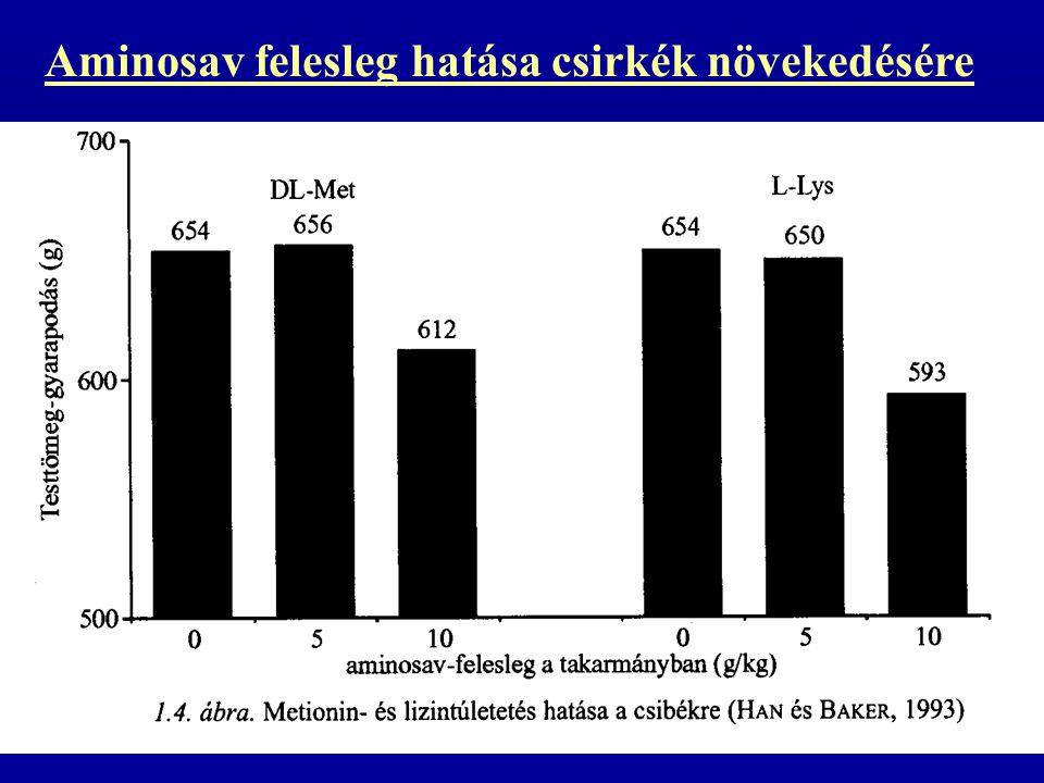 Aminosav felesleg hatása csirkék növekedésére