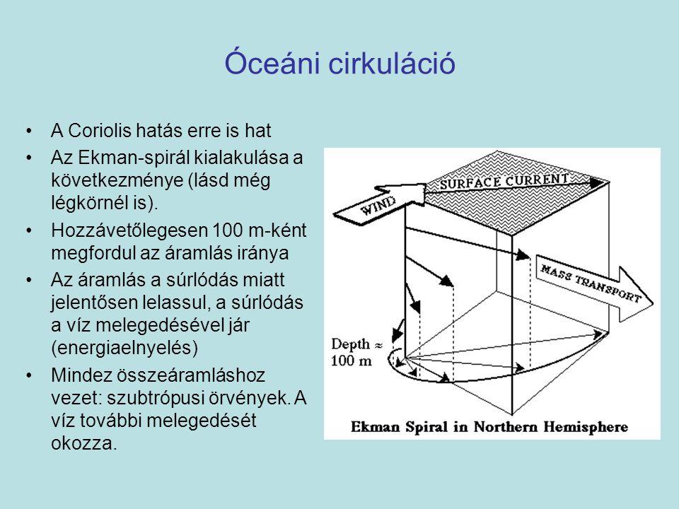 Óceáni cirkuláció A Coriolis hatás erre is hat