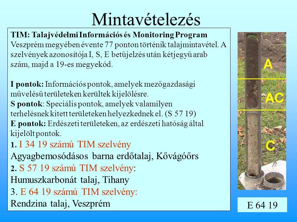 Mintavételezés 3. E 64 19 számú TIM szelvény: Rendzina talaj, Veszprém