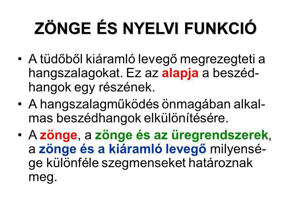 ZÖNGE ÉS NYELVI FUNKCIÓ