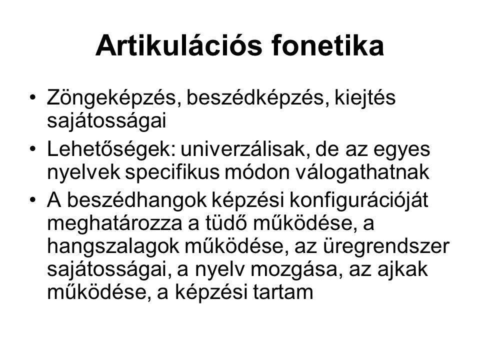 Artikulációs fonetika