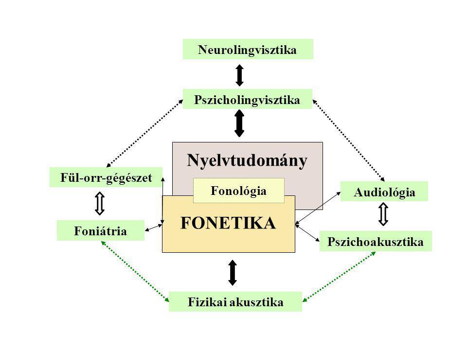 Nyelvtudomány Neurolingvisztika Pszicholingvisztika Fül-orr-gégészet