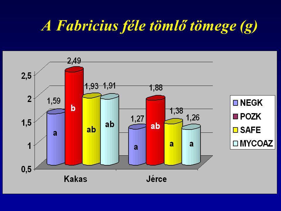 A Fabricius féle tömlő tömege (g)