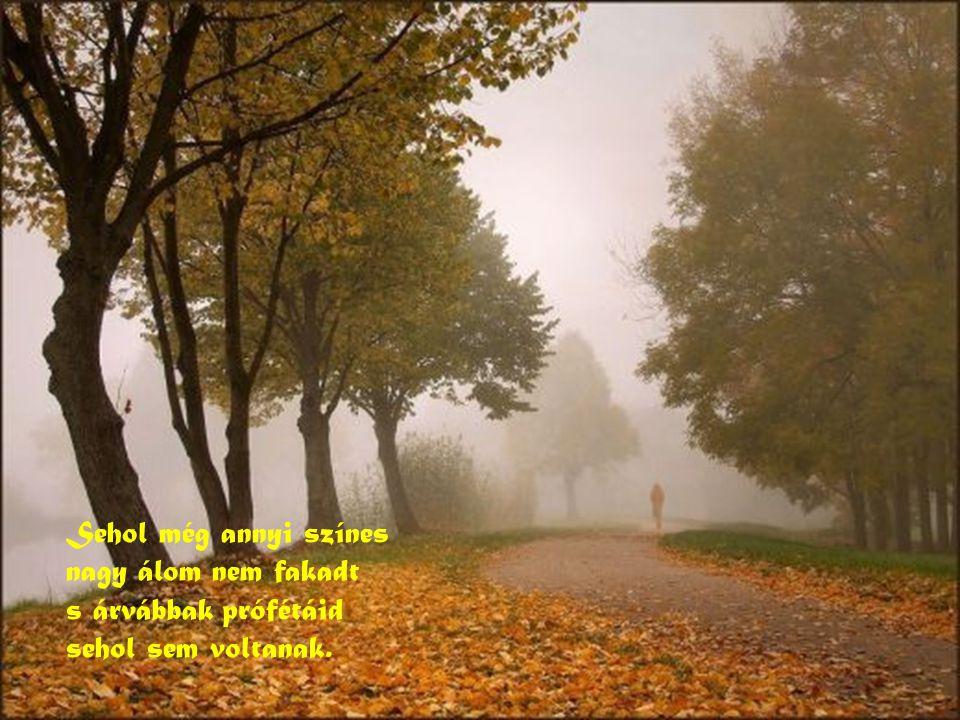 Sehol még annyi színes nagy álom nem fakadt s árvábbak prófétáid sehol sem voltanak.