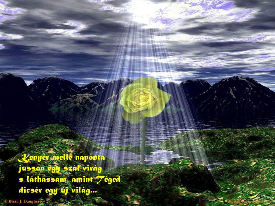 Kenyér mellé naponta jusson egy szál virág s láthassam, amint Téged dicsér egy új világ...