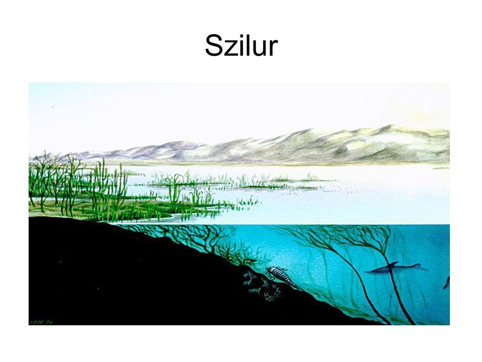 Szilur