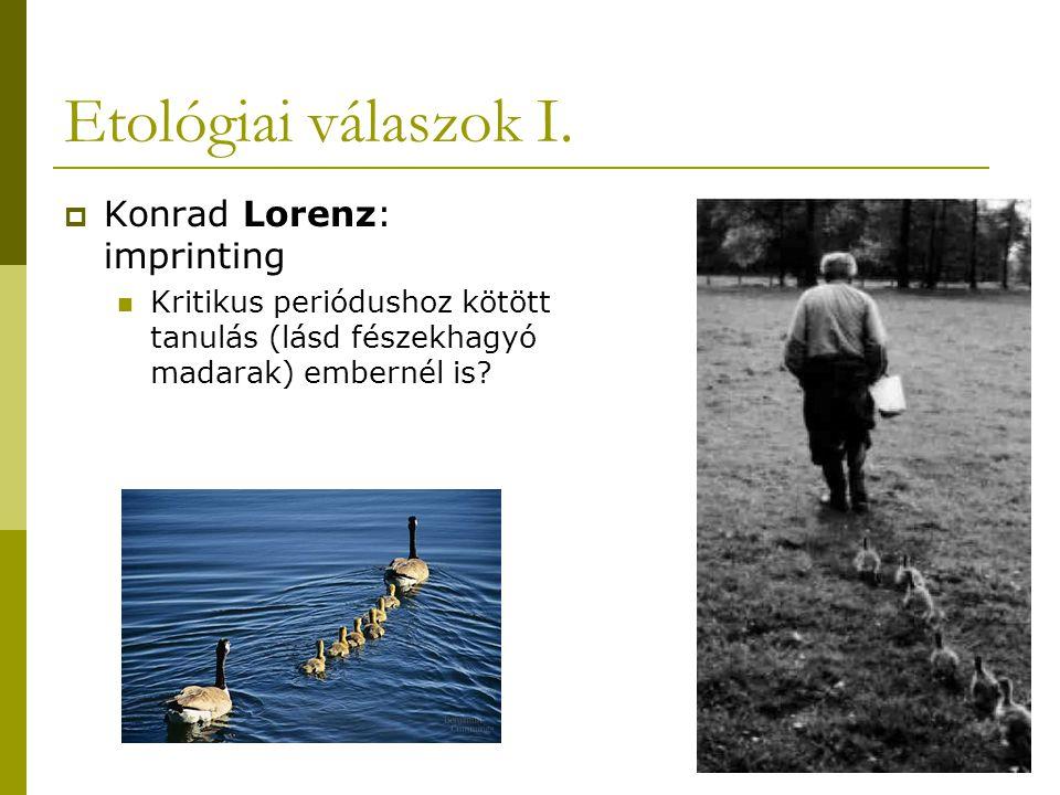Etológiai válaszok I. Konrad Lorenz: imprinting