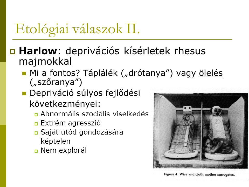 Etológiai válaszok II. Harlow: deprivációs kísérletek rhesus majmokkal