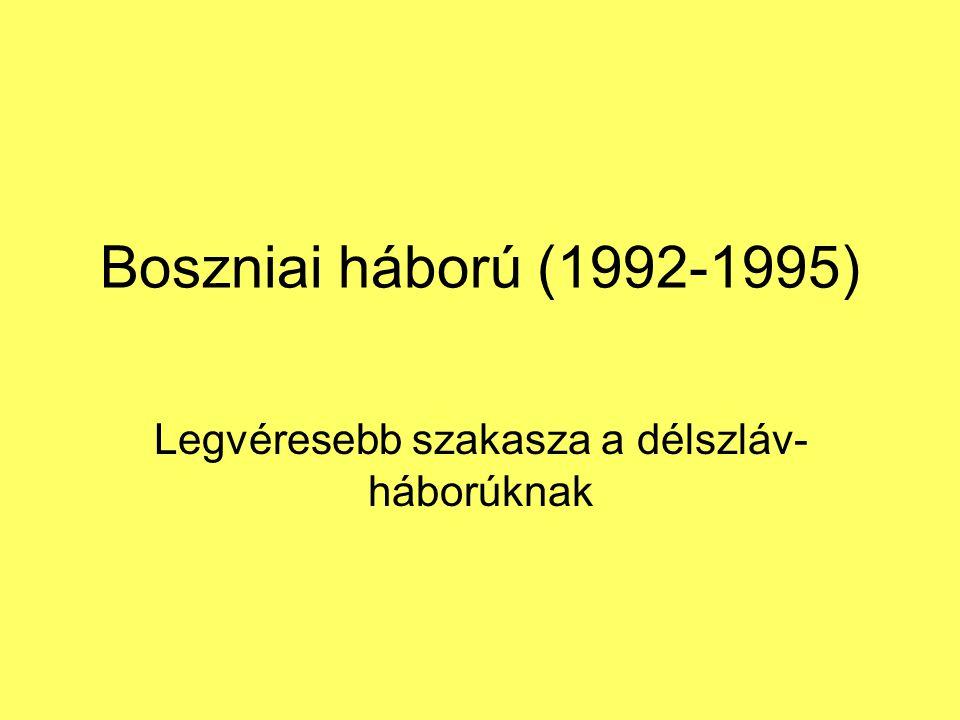 Legvéresebb szakasza a délszláv-háborúknak