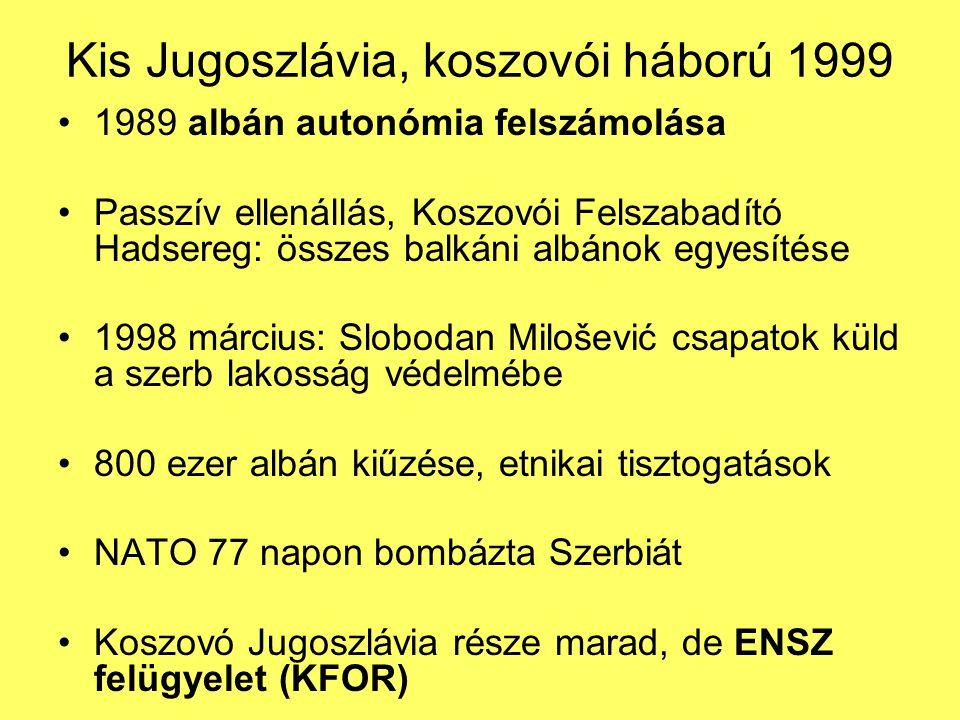 Kis Jugoszlávia, koszovói háború 1999