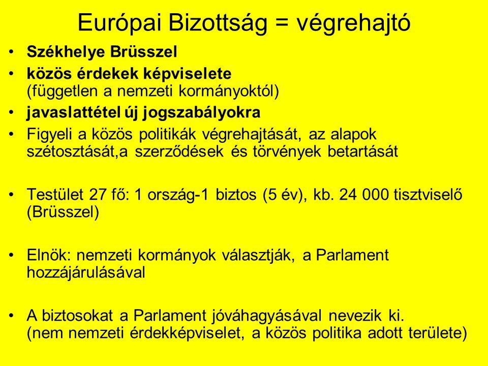Európai Bizottság = végrehajtó