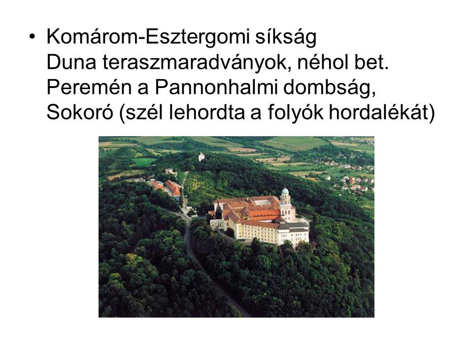 Komárom-Esztergomi síkság Duna teraszmaradványok, néhol bet