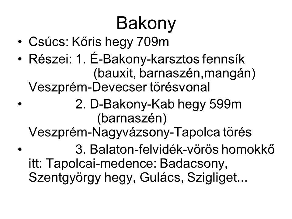 Bakony Csúcs: Kőris hegy 709m