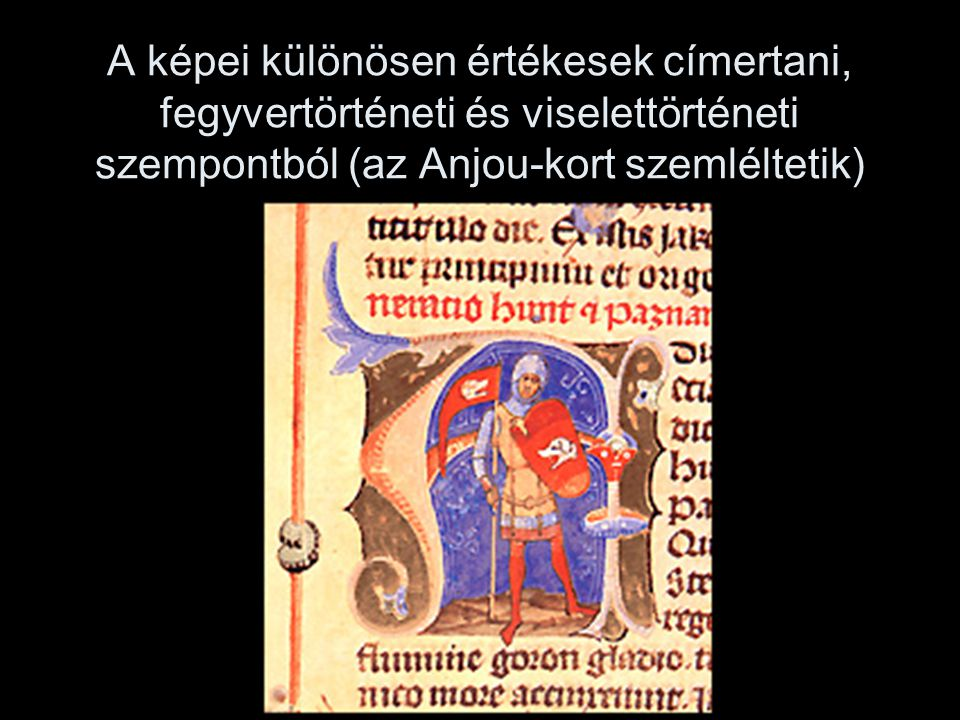 A képei különösen értékesek címertani, fegyvertörténeti és viselettörténeti szempontból (az Anjou-kort szemléltetik)