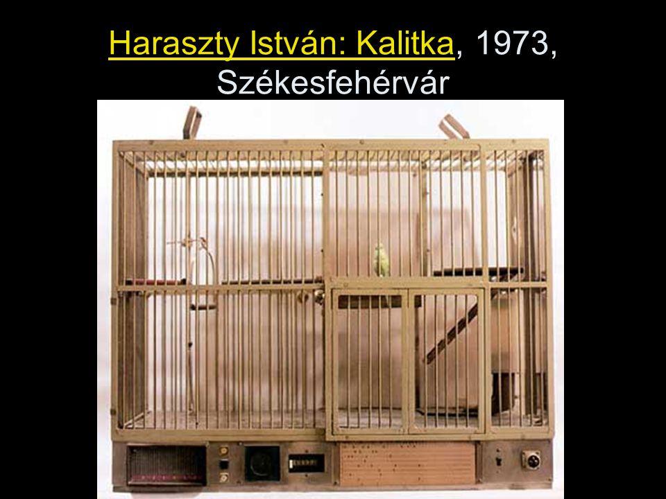 Haraszty István: Kalitka, 1973, Székesfehérvár