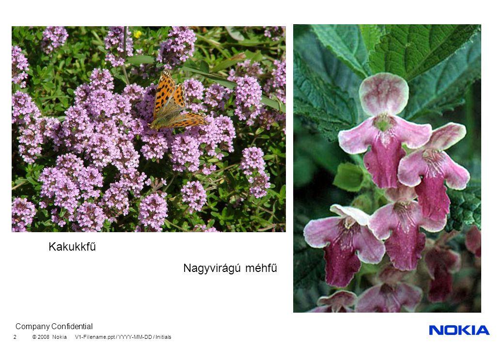 Kakukkfű Nagyvirágú méhfű
