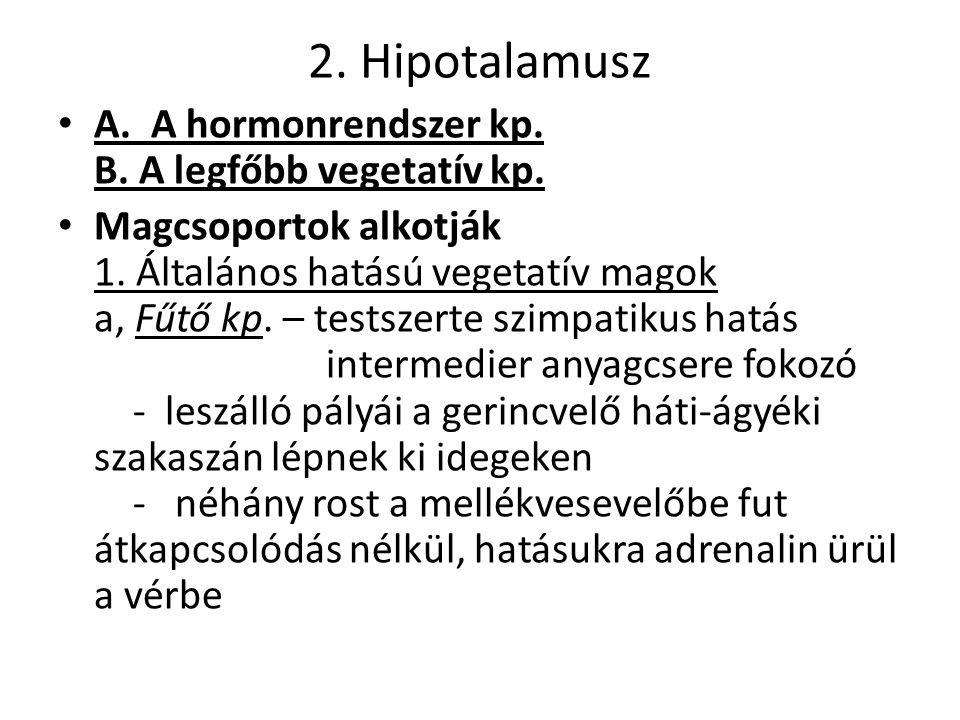 2. Hipotalamusz A. A hormonrendszer kp. B. A legfőbb vegetatív kp.