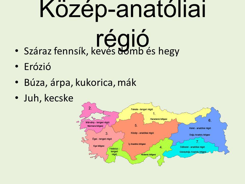 Közép-anatóliai régió