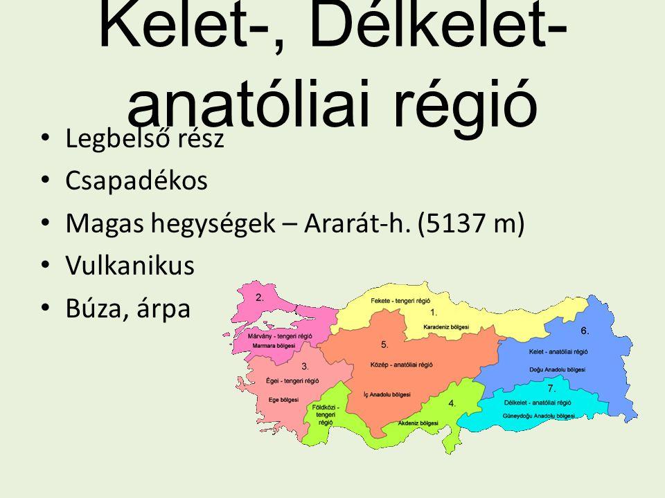 Kelet-, Délkelet-anatóliai régió