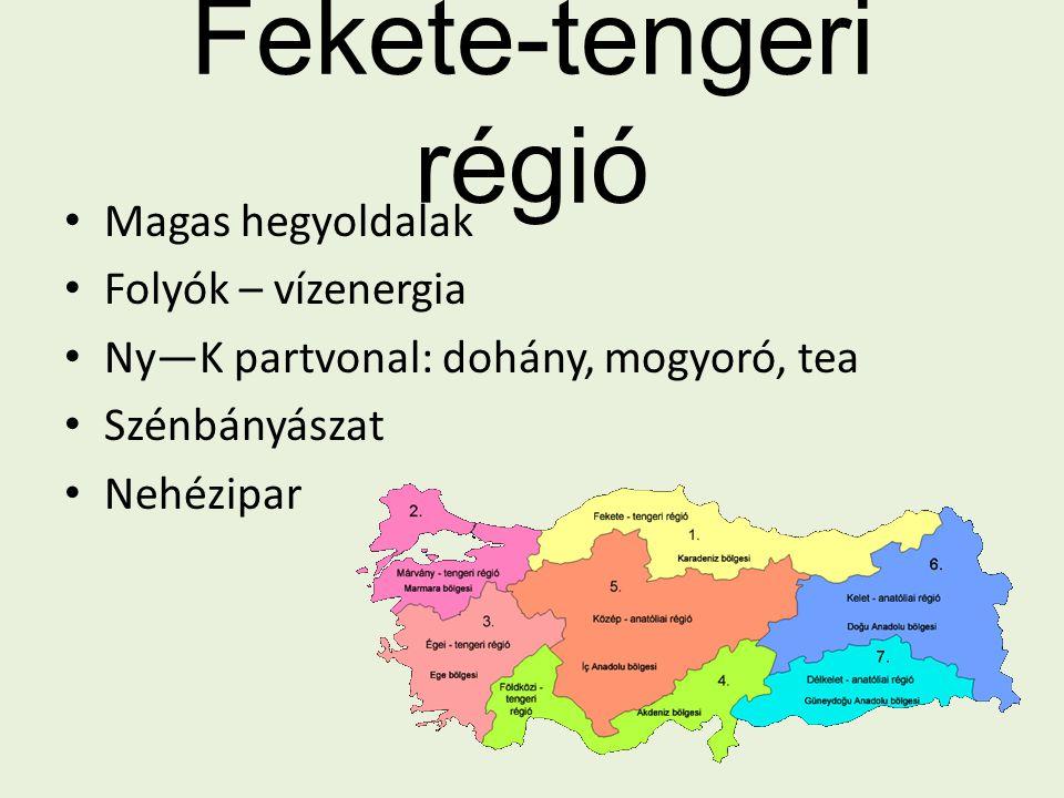 Fekete-tengeri régió Magas hegyoldalak Folyók – vízenergia
