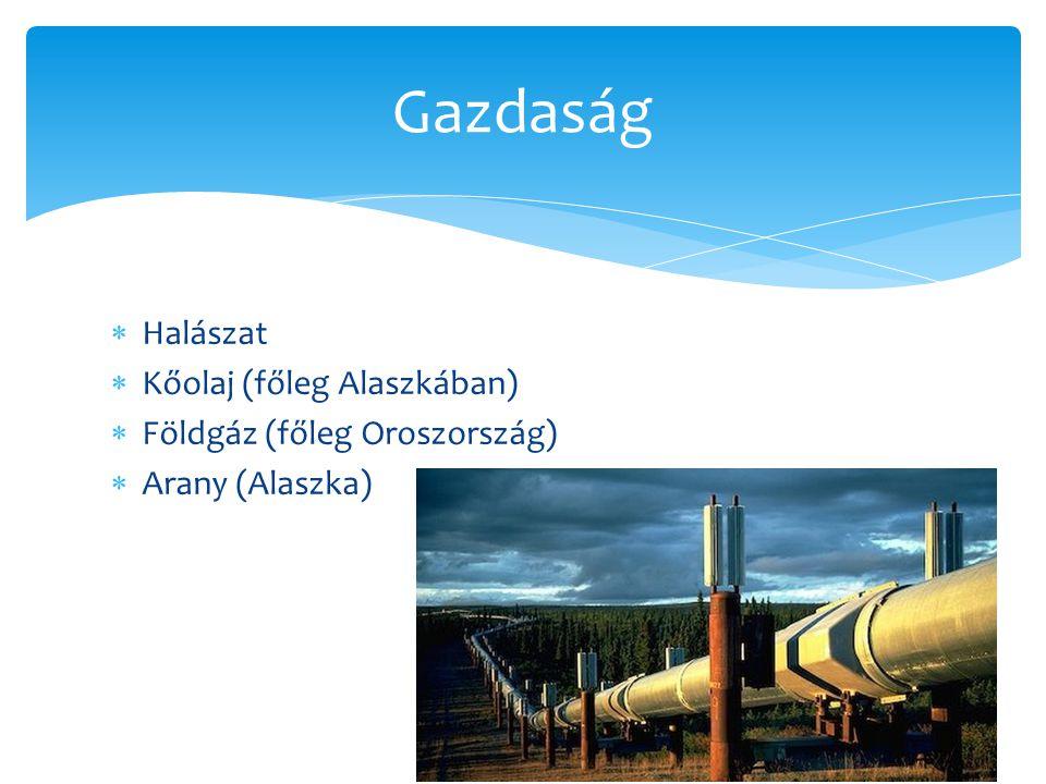 Gazdaság Halászat Kőolaj (főleg Alaszkában)