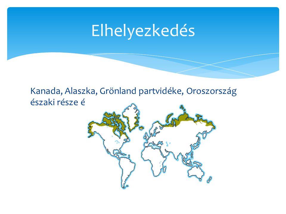 Elhelyezkedés Kanada, Alaszka, Grönland partvidéke, Oroszország északi része és az antarktiszi félsziget.