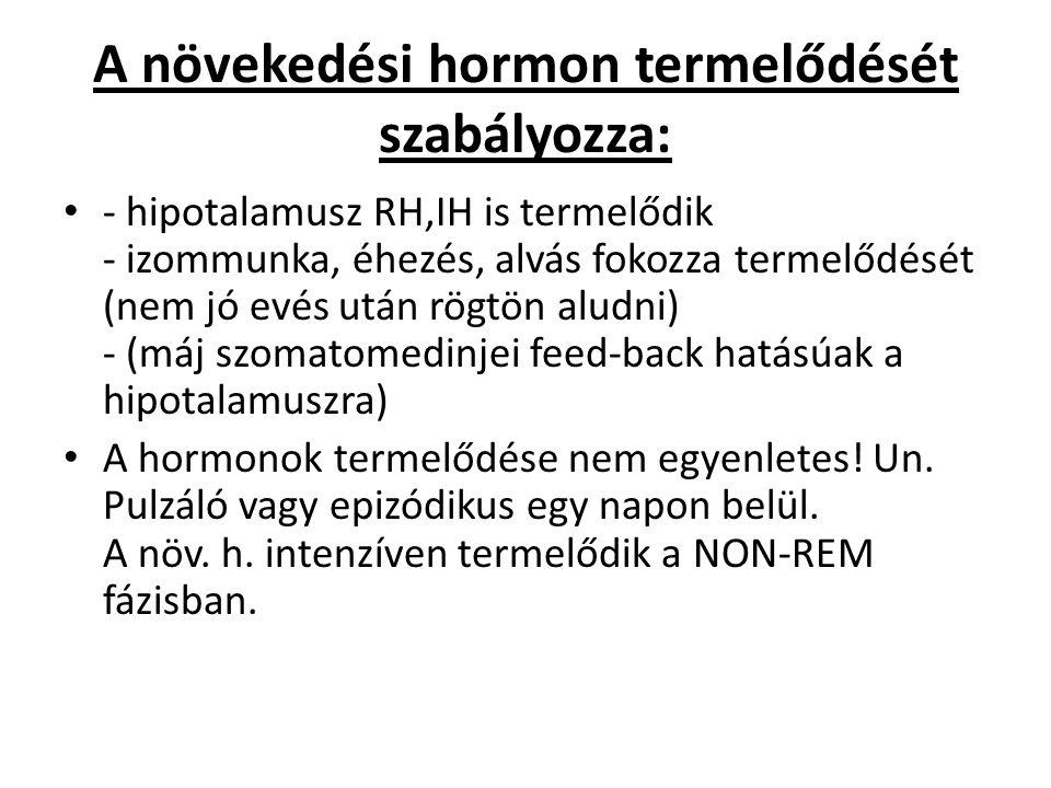 A növekedési hormon termelődését szabályozza: