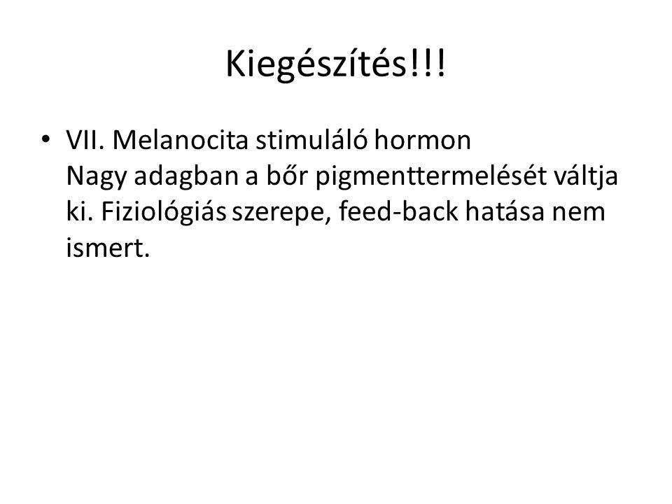 Kiegészítés!!. VII. Melanocita stimuláló hormon Nagy adagban a bőr pigmenttermelését váltja ki.