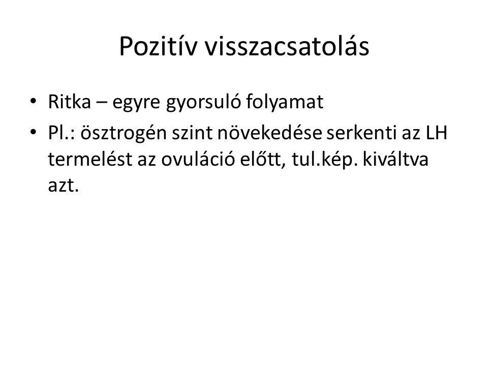 Pozitív visszacsatolás