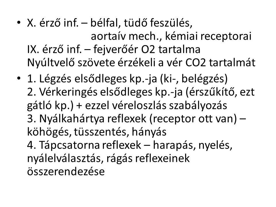 X. érző inf. – bélfal, tüdő feszülés, aortaív mech