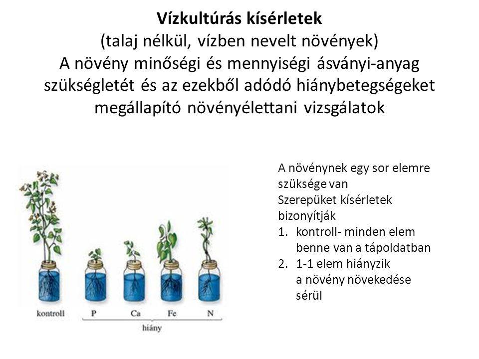 Vízkultúrás kísérletek (talaj nélkül, vízben nevelt növények) A növény minőségi és mennyiségi ásványi-anyag szükségletét és az ezekből adódó hiánybetegségeket megállapító növényélettani vizsgálatok